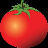 Rotten tomatoes einkunn